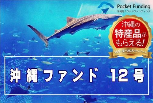 沖縄ファンド12号【不動産担保付】